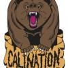 Colby Bear
